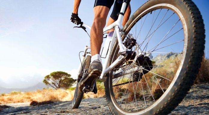 Cưỡi xe đạp giúp giảm một nửa nguy cơ ung thư - Văn hóa Phật giáo ...