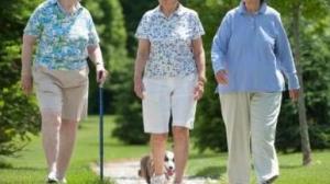 Đi bộ giúp sống thọ hơn