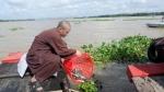 Phật giáo Bến Tre phóng sanh vì môi trường