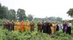 Ban Văn hóa Trung ương nghiên cứu và khảo sát thực tế Di tích Phật viện Đồng Dương