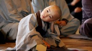 Việc làm mỗi ngày của tín đồ Phật giáo