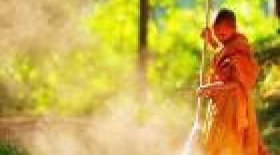 Rửa chén bát, cào lá khô: Trí tuệ từ các bậc tiền nhân